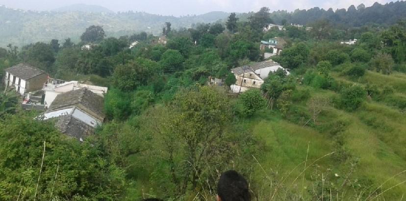 गांव का दृश्य
